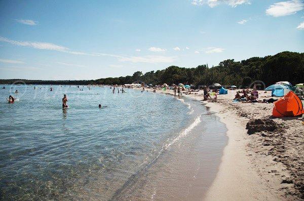 Photo de la plage de Pinarellu en Corse - Ste Lucie de Porto-Vecchio