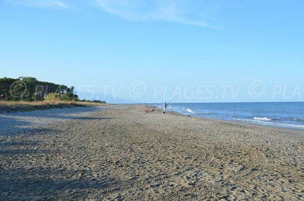 Grande plage de sable à Pineto en Corse