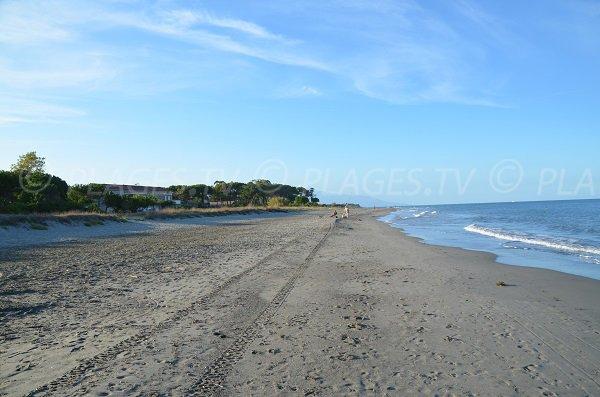 Photo de la plage de Pineto à Lucciana en Corse