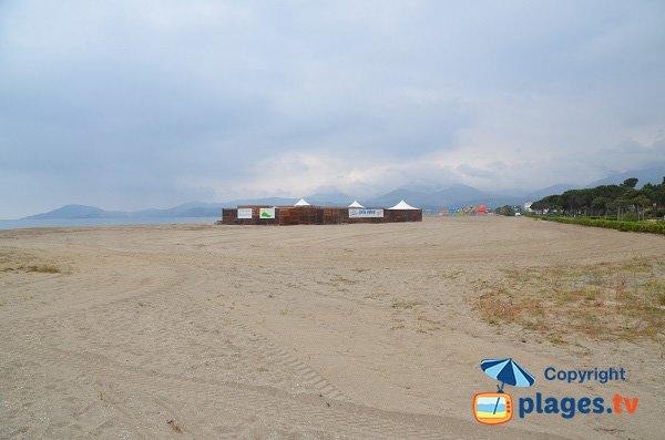 Nord de la plage des Pins - Argelès-Plage