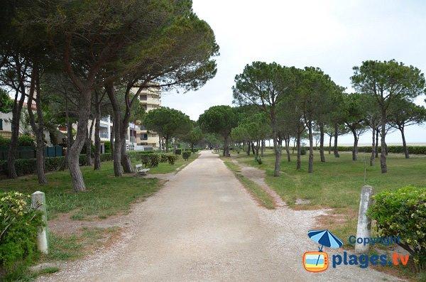 Promenade piétonne le long de la plage des Pins