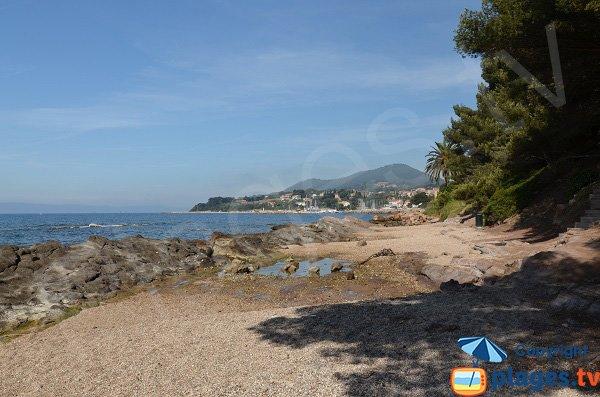 Plage des Pins Penchés à proximité du port des Salettes à Carqueiranne