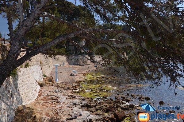 Photo de la plage des Pins Penchés de Carqueiranne