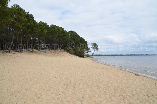 Plage de Piqueyrot sur le lac d'Hourtin