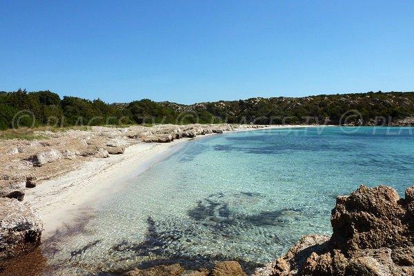Plage de Pisciu Cane dans le golfe de Ventilegne - Corse