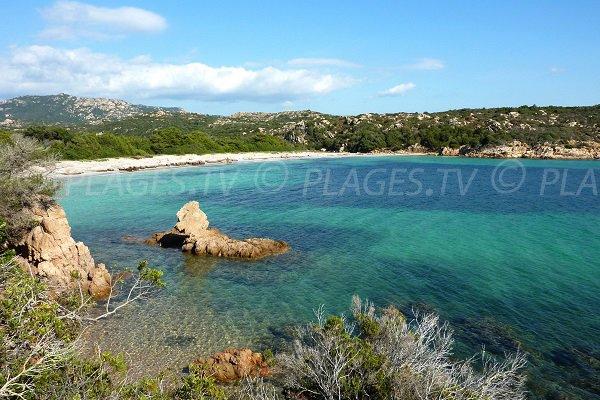Photo de la plage de Pisciu Cane à Bonifacio