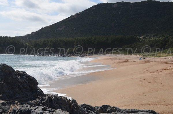 Plage de sable à Usciapa - Olmeto