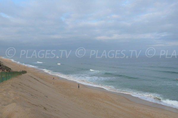 Dunes de la plage de la piste à Capbreton