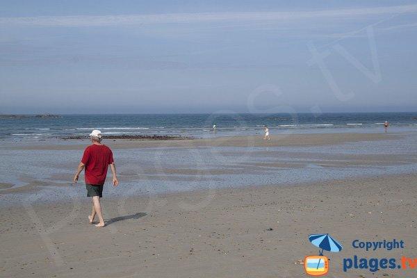 Plage de St Jean du Doigt à marée basse