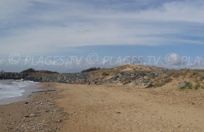 Une plage à proximité de la Pointe de l'Aiguillon