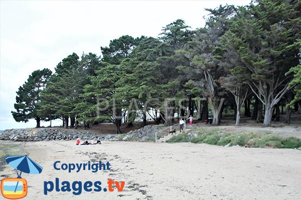 Aire de pique nique sur la plage à Séné - Pointe du Bill