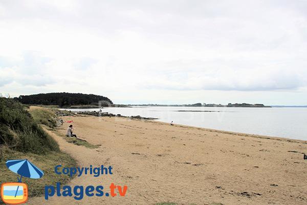 Photo de la plage de la Pointe du Bill - Séné