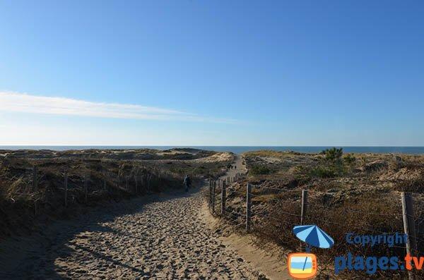 Chemin d'accès à la plage de la Pointe Espagnole - La Tremblade