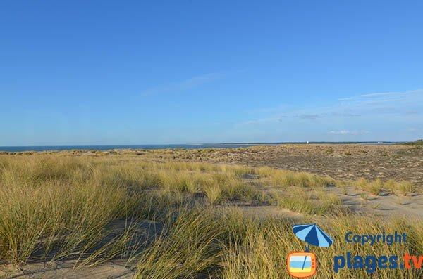 Espace dunaire de la Pointe Espagnole