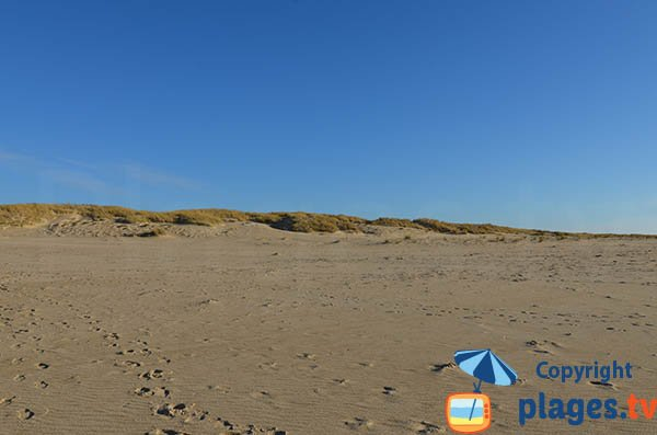 Dunes and beach of Pointe Espagnole - La Tremblade