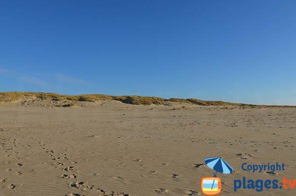Dunes de la plage de Pointe Espagnole - La Tremblade
