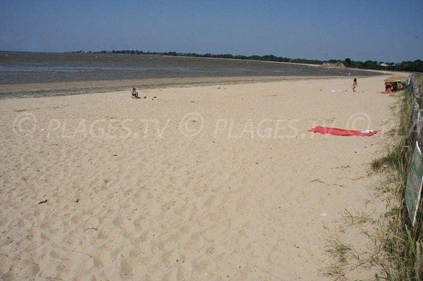 Beach near Loire Atlantique Morbihan
