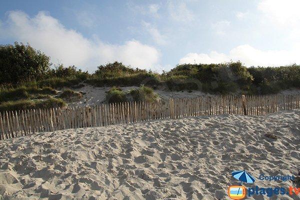 Dunes de la plage de Pors Gelen