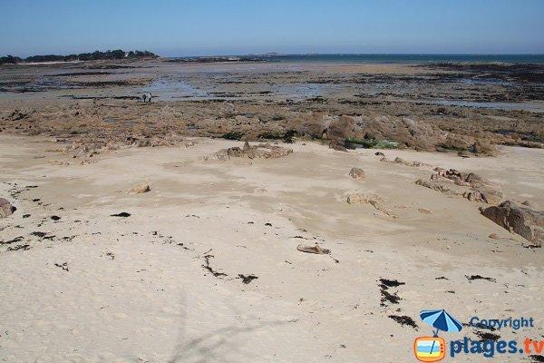 Vue sur l'ile Callot depuis la plage de Pors Pol de Carantec