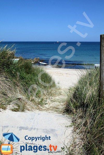 Dunes de la plage de Porsmeur à Plouescat