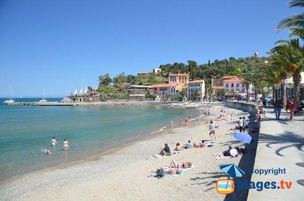 Plage de Collioure côté Côte Vermeille
