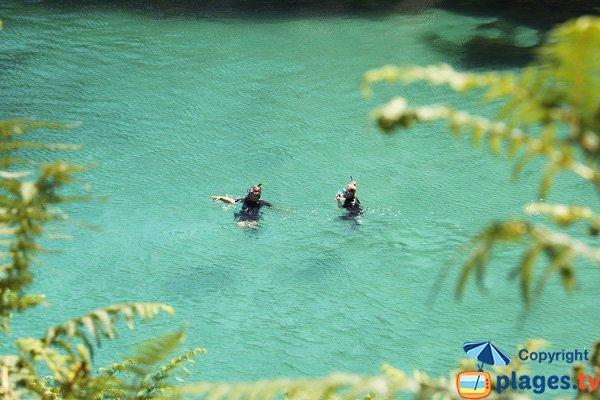 Plongée à Sauzon