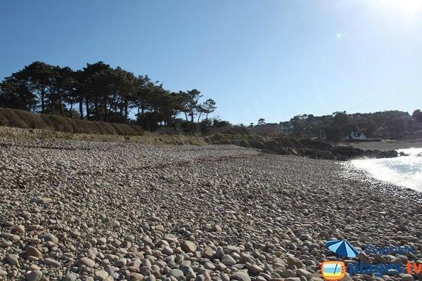Environnement de la plage de Port Blanc - Plougasnou