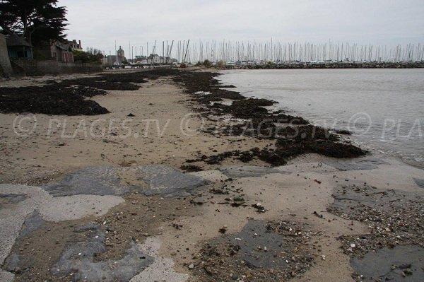 Sand beach near the port of Piriac