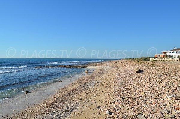 Spiaggia a Carro