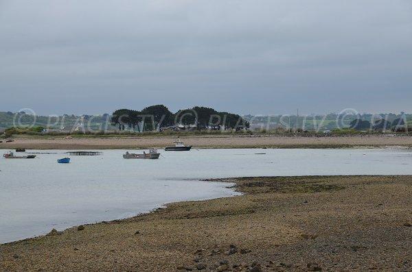 Port du Castel et de Beg Ar Vilin à Plougrescant