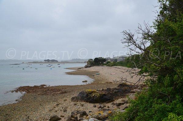 Vue d'ensemble de la plage du Castel à Plougrescant