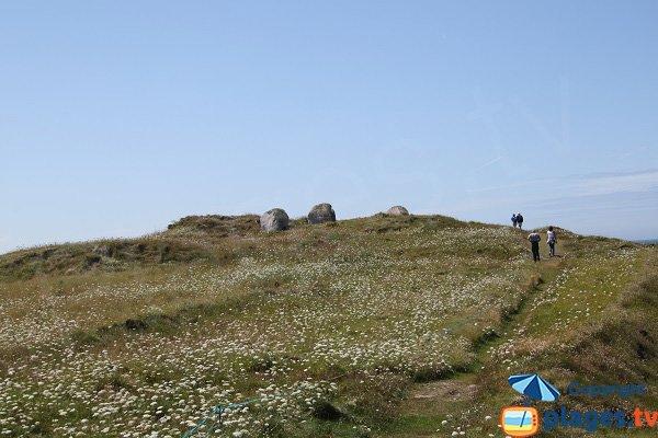 Stroll on the island of Sieck - Santec