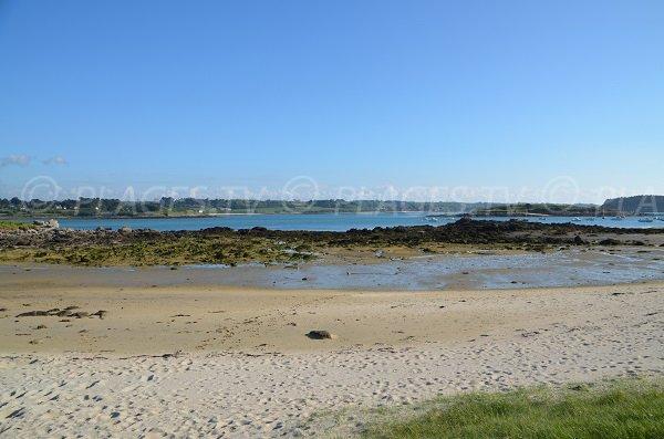 Plage du port de Landrellec à marée basse - vue sur l'ïle Grande