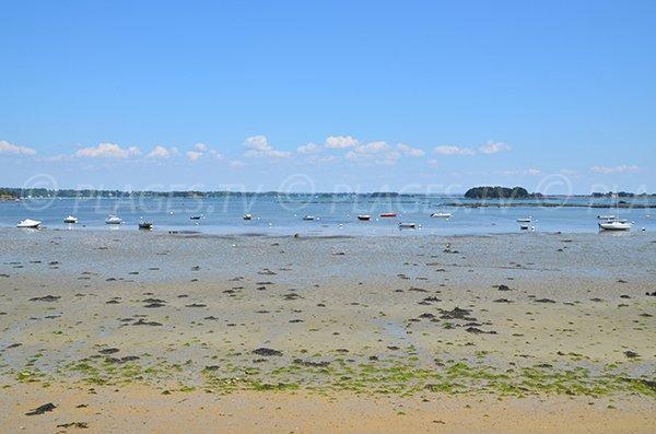 Vue sur les ilots du golfe du Morbihan depuis la plage de Port Miquel