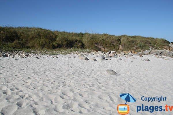 Dune de la plage de Port Neuf à Sibiril - Bretagne