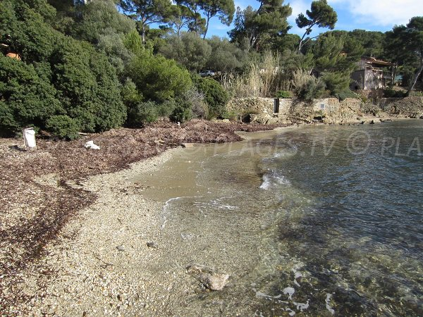 Photo of the beach in the port of Niel - Giens
