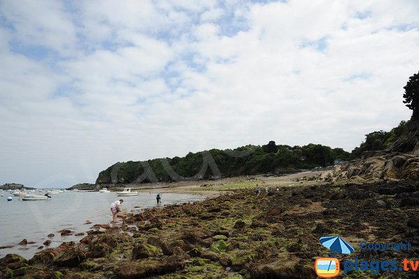 Photo of Port Picain beach in Cancale