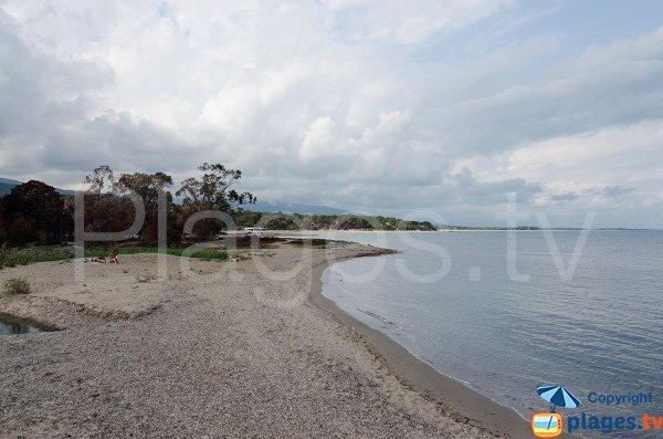 Plage à l'embouchure de la rivière de Solenzara