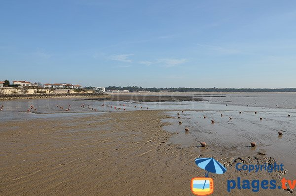 Port beach at low tide - St Georges de Didonne
