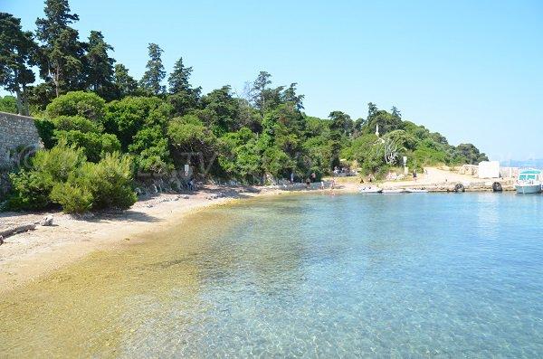 Se baigner sur l'ile de Saint Honorat - Plage du Port