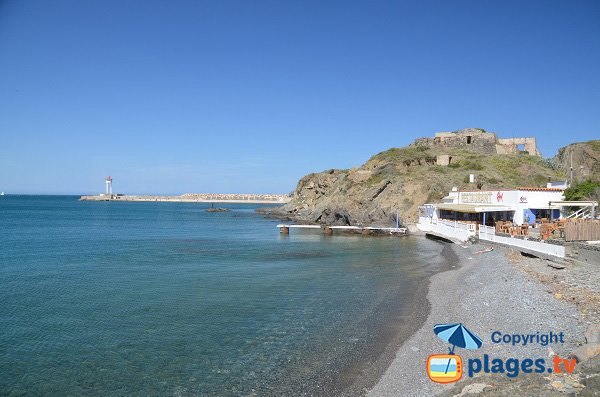 Photo of Harbour beach in Port-Vendres