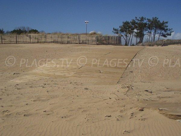 Environement de la plage de la porte des Iles à Grière Plage