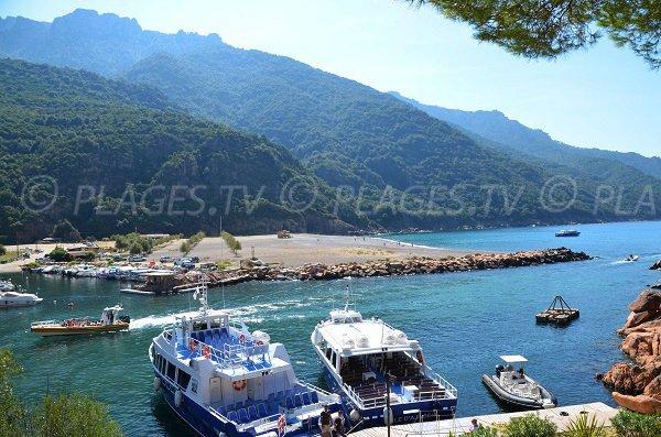 Spiaggia e porto di Porto - Corsica