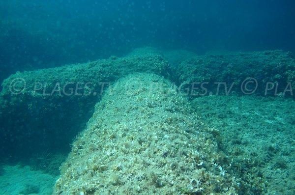 Colonne de marbre dans le golfe de Porto Novo