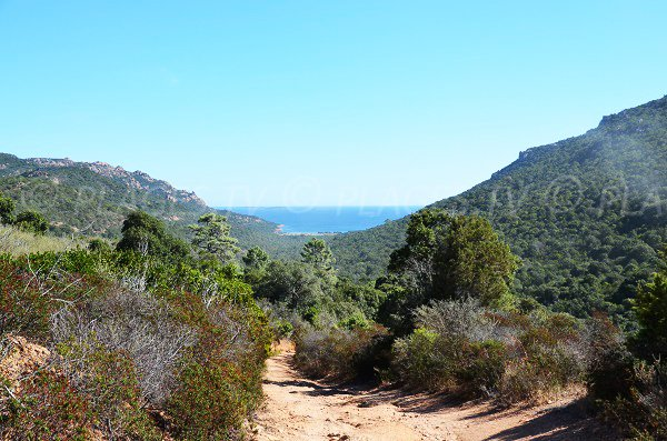 View on Gulf of Porto Novo from the path