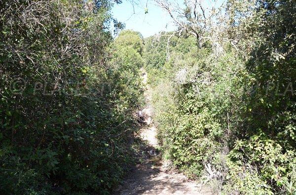 Sentiero Porto Novo