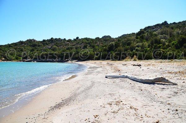 Sandy beach on the Gulf of Porto Novo between Porto Vecchio and Bonifacio