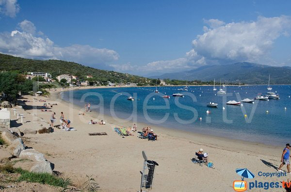 Photo of Porto Pollo beach in Corsica