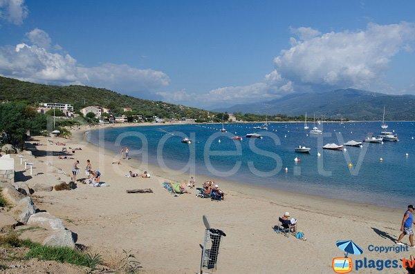 Photo de la plage de Porto Pollo