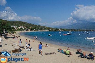 Porto Pollo beaches in Corsica